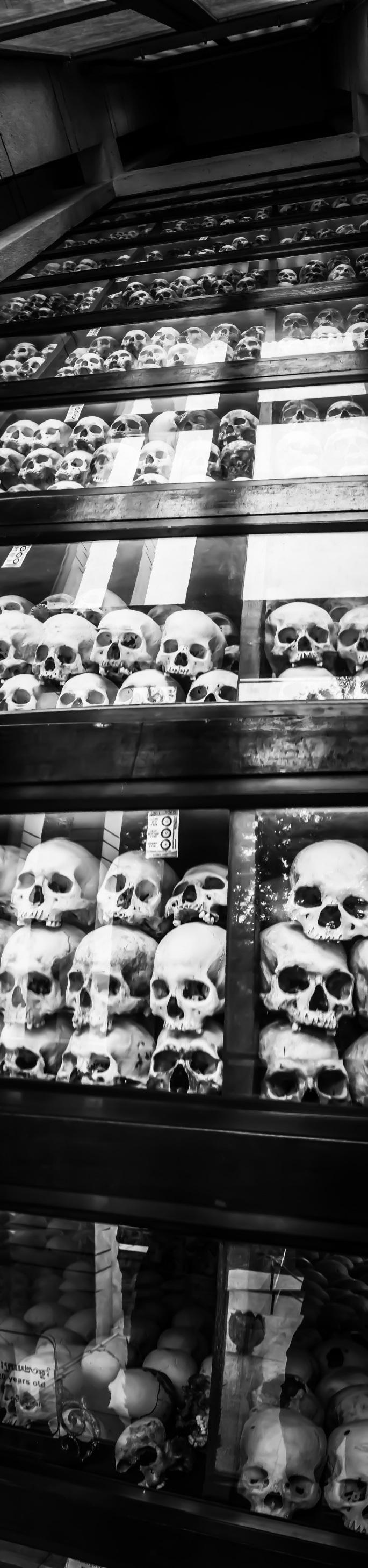 PP_Killing_Fields_Skull_2