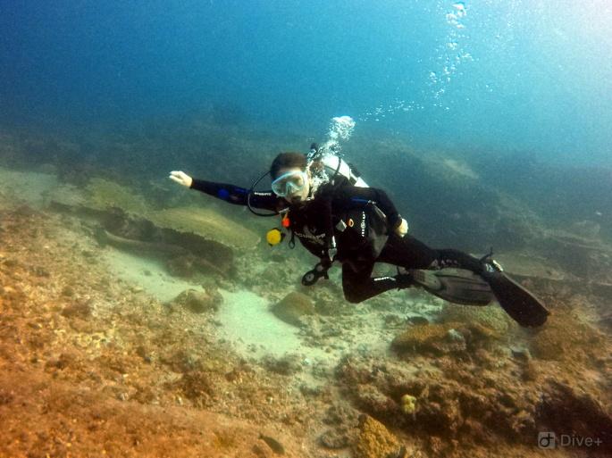 Komodo_Claire_Diving.jpg